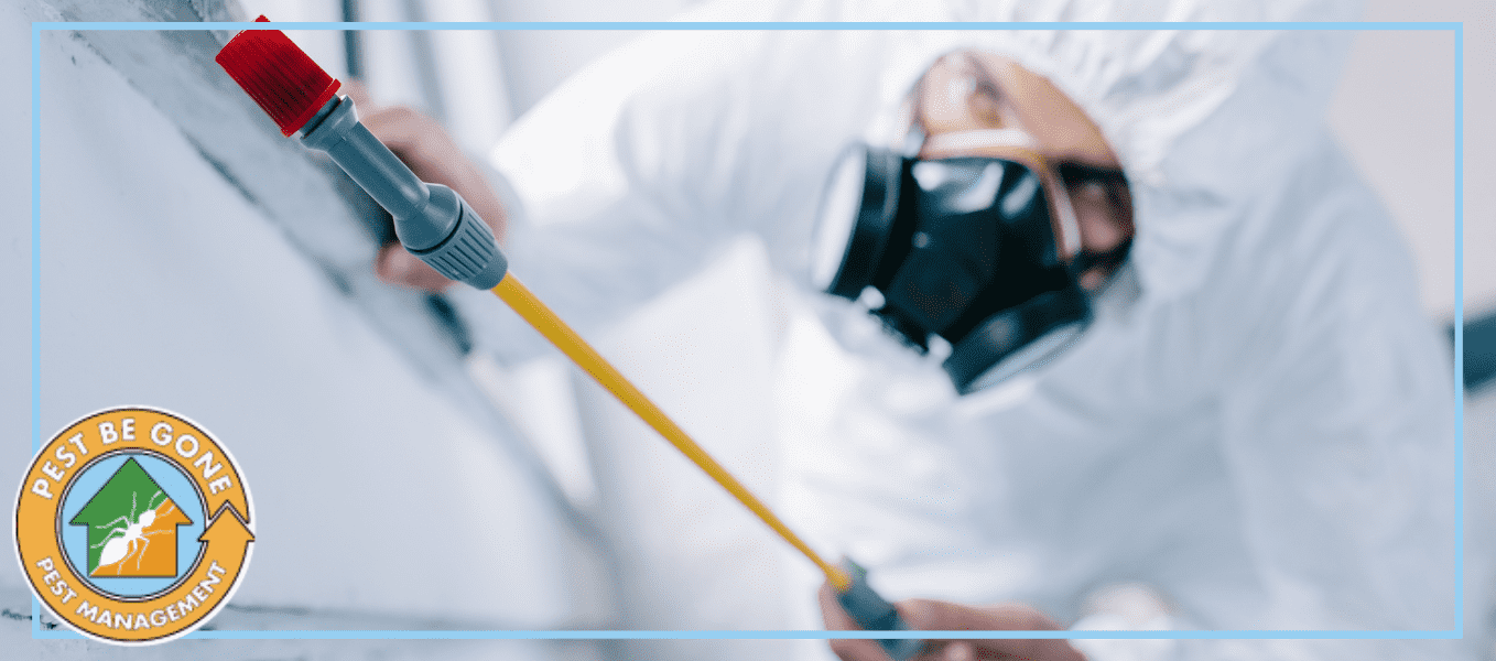 6 Reason Why Pest Be Gone is your Pest Control Service of Choice